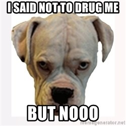 stahp guise - I SAID NOT TO DRUG ME  BUT NOOO