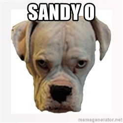 stahp guise - SANDY O