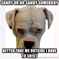 stahp guise - SANDY OR NO SANDY SOMEBODY BETTER TAKE ME OUTSIDE I HAVE TO SH!$T