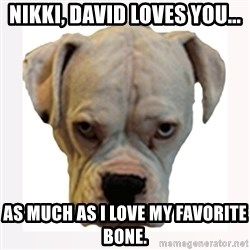 stahp guise - NIKKI, DAVID LOVES YOU... AS MUCH AS I LOVE MY FAVORITE BONE.
