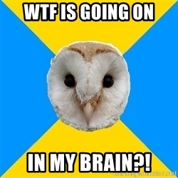 Bipolar Owl - WTF IS GOING ON IN MY BRAIN?!