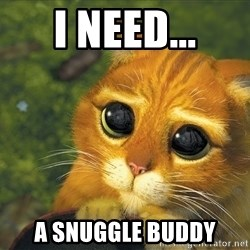 Sad Eyed Cat - I need... a snuggle buddy