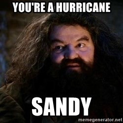 Yer A Wizard Harry Hagrid - you're a hurricane sandy