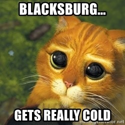 Sad Eyed Cat - Blacksburg... gets really cold