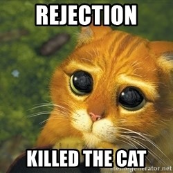Sad Eyed Cat - rejection killed the cat