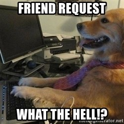 I have no idea what I'm doing - Dog with Tie - friend request what the hell!?