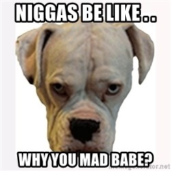 stahp guise - NIGGAS BE LIKE . .  WHY YOU MAD BABE?