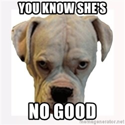 stahp guise - YOU KNOW SHE'S NO GOOD