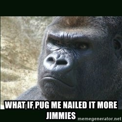 Rustled Jimmies - what if pug me nailed it more jimmies