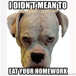 stahp guise - I DIDN'T MEAN TO  EAT YOUR HOMEWORK