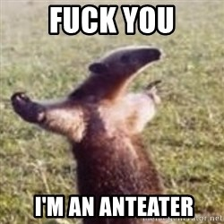 FUCK YOU, I'M AN ANTEATER - FUCK YOU  I'M AN ANTEATER