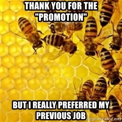 "Honeybees - thank you for the ""promotion"" but i really preferred my previous job"