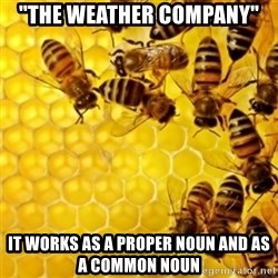 "Honeybees - ""The Weather company"" it works as a proper noun and as a common noun"