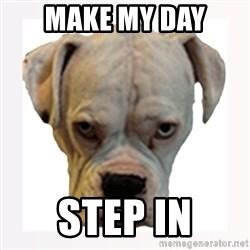 stahp guise - MAKE MY DAY STEP IN