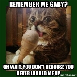 lil bub - REMEMBER ME GABY? OH WAIT, YOU DON'T BECAUSE YOU NEVER LOOKED ME UP