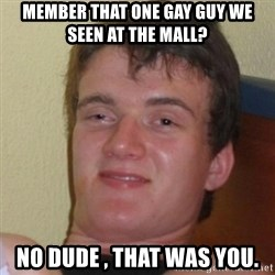 Really Stoned Guy - Member that one gay guy we Seen at the mall? No dude , that was you.