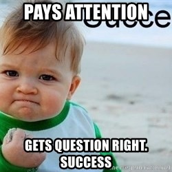 success baby - Pays attention  gets question right. Success