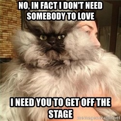 Colonel Meow - no, in fact i don't need somebody to love i need you to get off the stage
