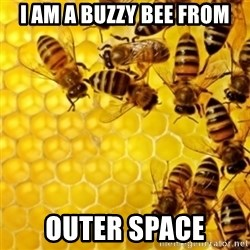 Honeybees - I AM A BUZZY BEE FROM OUTER SPACE