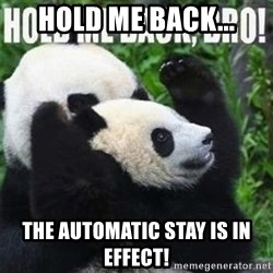 Hold me back panda - Hold me back... the automatic stay is in effect!