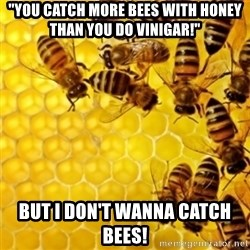 "Honeybees - ""YOU CATCH MORE BEES WITH HONEY THAN YOU DO VINIGAR!"" BUT I DON'T WANNA CATCH BEES!"