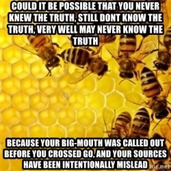 Honeybees - could it be possible that you never knew the truth, still dont know the truth, very well may never know the truth because your big-mouth was called out before you crossed go, and your sources have been intentionally mislead