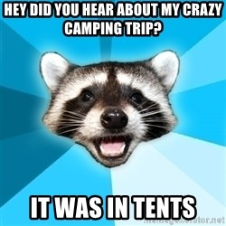 Lame Pun Coon - hey did you hear about my crazy camping trip? it was in tents