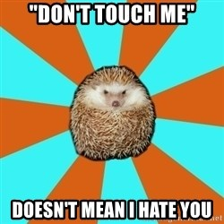 "Autistic Hedgehog - ""Don't touch me"" doesn't mean I hate you"