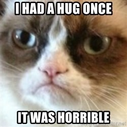 angry cat asshole - I had a hug once it was horrible