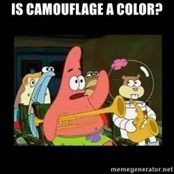 Patrick Star Instrument - Is Camouflage a color?