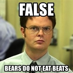 Dwight Meme - false bears do not eat beats