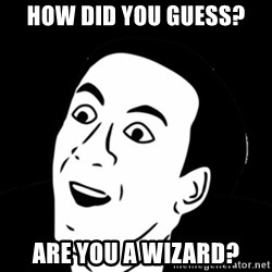 you don't say meme - HOW DID YOU GUESS? ARE YOU A WIZARD?