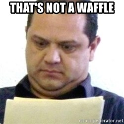 dubious history teacher - THAT'S NOT A WAFFLE