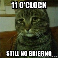 Depressed cat 2 - 11 o'clock still no Briefing
