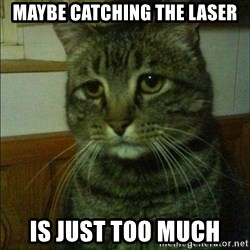 Depressed cat 2 - maybe catching the laser is just too much