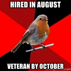 Retail Robin - HIRED IN AUGUST VETERAN BY OCTOBER