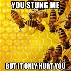 Honeybees - YOU STUNG ME  BUT IT ONLY HURT YOU