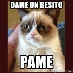 Tard the Grumpy Cat - Dame un besito  pame