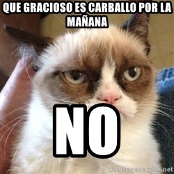Grumpy Cat 2 - Que gracioso es carballo por la mañana NO