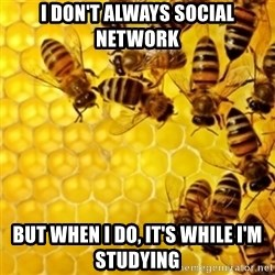 Honeybees - I DON'T ALWAYS SOCIAL NETWORK BUT WHEN I DO, IT'S WHILE I'M STUDYING