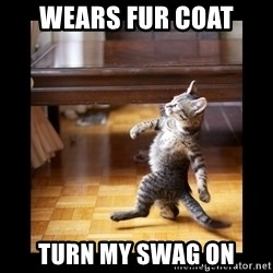 cat swag - wears fur coat turn my swag on