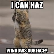 Begging Cat - I CAN HAZ WINDOWS SURFACE?