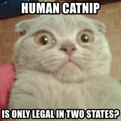 GEEZUS cat - Human Catnip is only legal in two states?