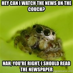 The Spider Bro - hey can I watch the news on the couch? nah, you're right, i should read the newspaper