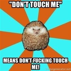 "Autistic Hedgehog - ""Don't touch me"" Means Don't fucking touch me!"