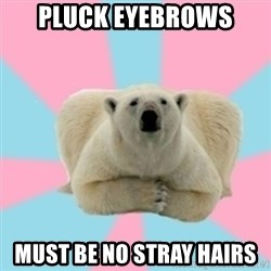 Perfection Polar Bear - pluck eyebrows must be no stray hairs