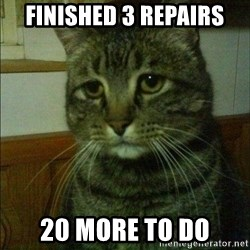 Depressed cat 2 - Finished 3 repairs 20 more to do