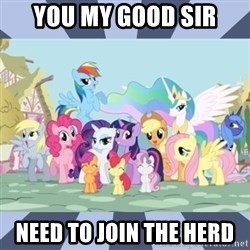 MLP - you my good sir need to join the herd
