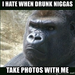 Rustled Jimmies - I HATE WHEN DRUNK NIGGAS  TAKE PHOTOS WITH ME