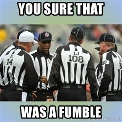 NFL Ref Meeting - YOU SURE THAT  WAS A FUMBLE